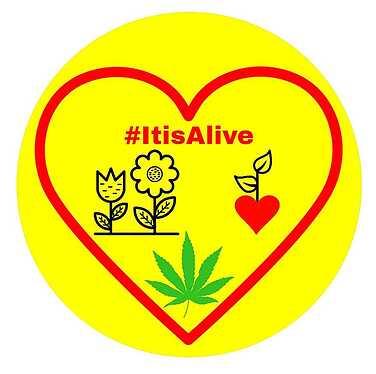 -Alive-