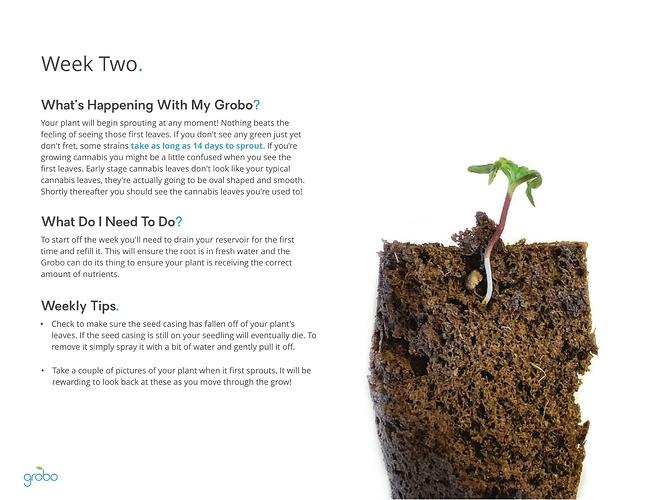 Grobo-Grow-Guide-05