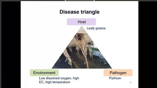 Diagnosis_Triangle..~~
