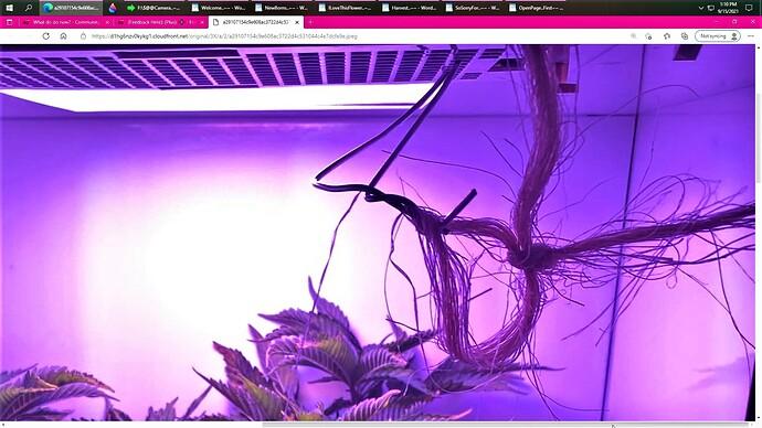 Screenshot024 (2)
