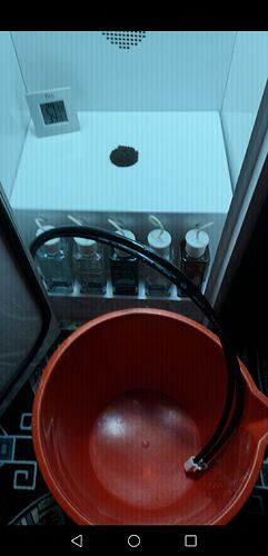 Screenshot_20201224_120310_com.android.gallery3d