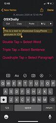 how-to-copy-paste-gestures-1-..1~~