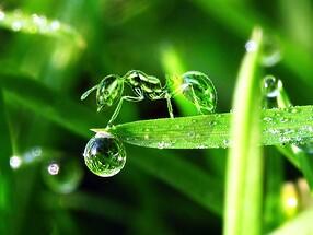 WaterDroplet..1~~