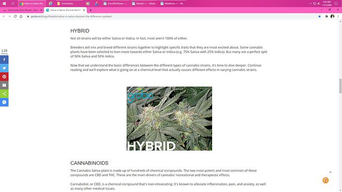 OurGrowShared