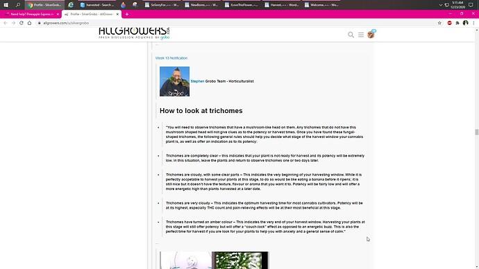 Trichomes..2~~