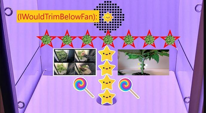 TrimmingBelow..~~