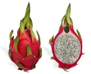 Dragon_Fruite..~~