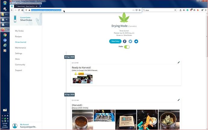 MyGrowJournal..1--