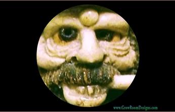 Trichomes..--