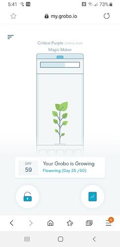 Screenshot_20200210-174104_Samsung Internet