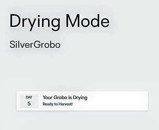 ~@DryMode..--
