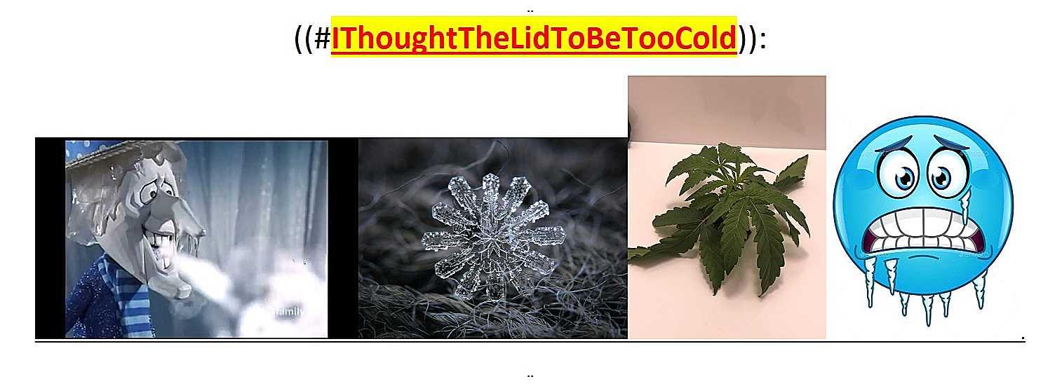 ~@Cold..--