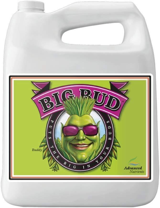 BigBud..--
