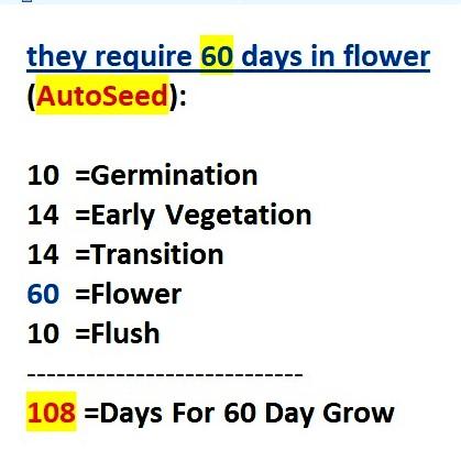 Fast_Seed..1~~ (2)