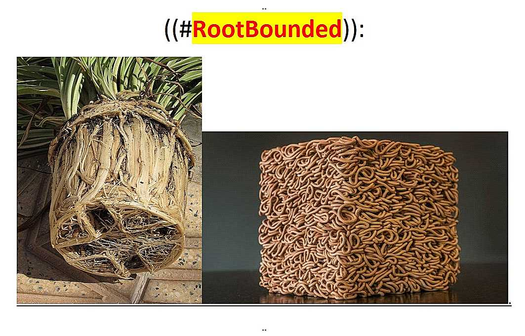~@RootBounded..--