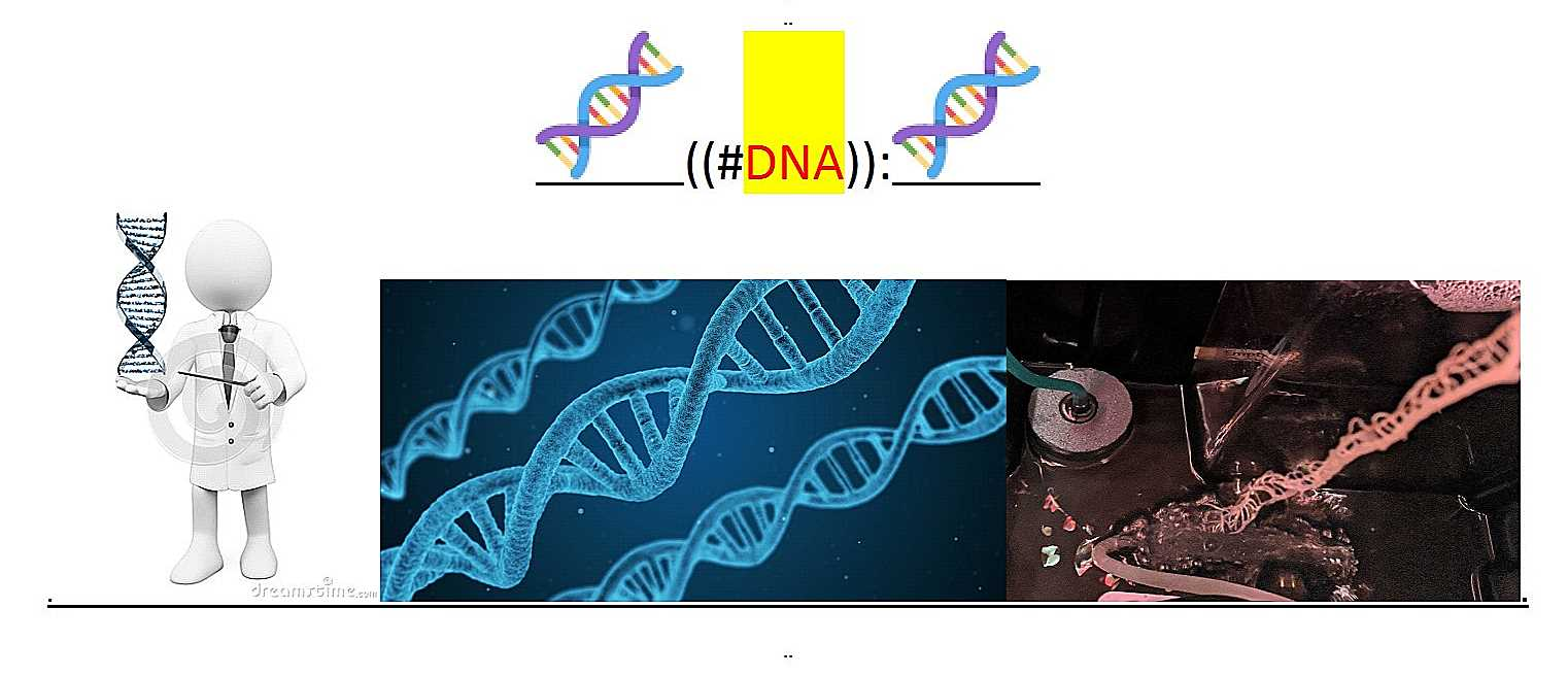 ~@DNA..1--