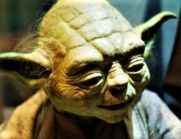 Yoda_Patience..1c~~ (2)