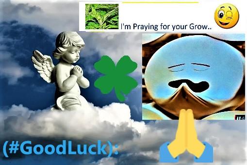 Good_Luck..~~