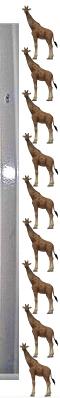 Giraffee..~~